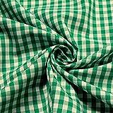 Stoff Baumwolle Vichy Karo groß grün weiß 5 mm Swafing
