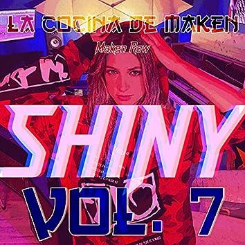 Shiny: La Cocina de Maken (Vol.7)