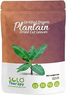 Certified Organic Plantain Leaf, 3 oz., Plantain Dried Cut Leaves , Plantago Major, Plantain Leaf Tea in Resealable Bag, P...