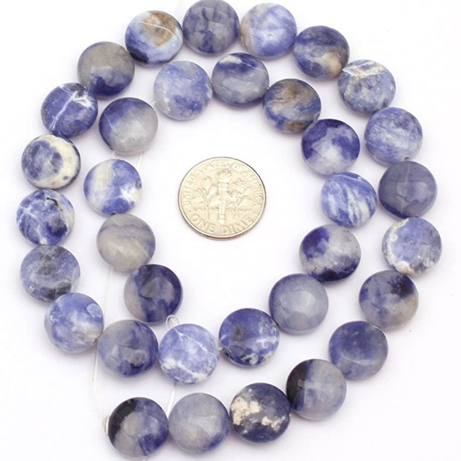JOE FOREMAN 12mm Sodalite Semi Precious Gemstone Coin Loose Beads for Jewelry Making DIY Handmade Craft Supplies 15