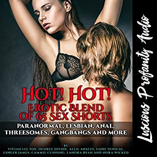 Hot! Hot! Erotic Blend of 65 Sex Shorts Titelbild
