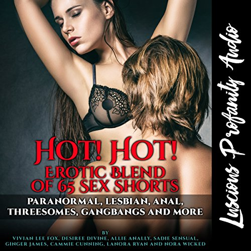 Hot! Hot! Erotic Blend of 65 Sex Shorts audiobook cover art
