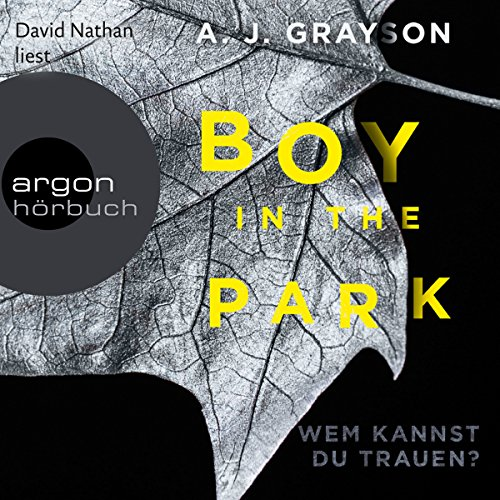 Boy in the Park audiobook cover art