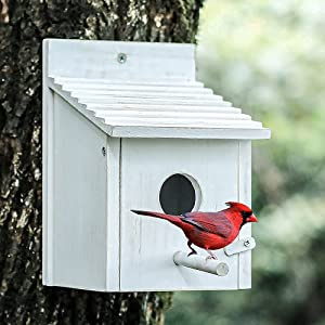 NATUREYLWL Bird House for Outside with Pole for Finch Bluebird Cardinals Garden Wooden Hanging Birdhouses