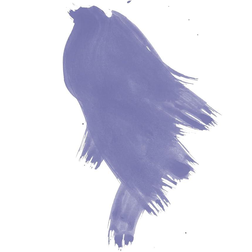 Daler-Rowney FW Pearlescent Acrylic Ink, 1 oz, Dutch Blue (603201127)