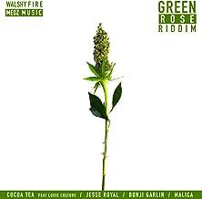 Best green rose song Reviews