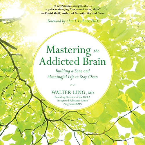 Mastering the Addicted Brain audiobook cover art