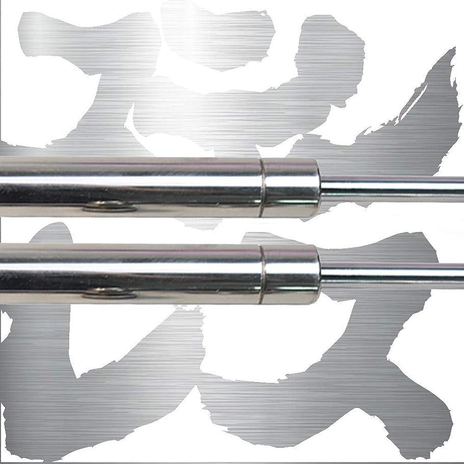 したい袋遠いKUNSYOUKIM ボンネットフードダンパー トヨタ シエナ Toyota Sienna XL30型 2010-2020 3代目ミニバンに適合 車両改装用品 車検適応 1年間品質保証 2本セット [並行輸入品]