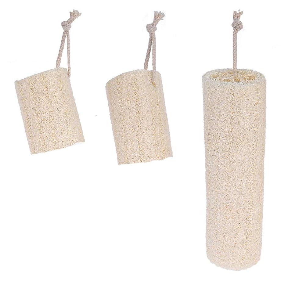 調査計画的カリングHealifty 吊りロープ天然剥離Loofahバックスポンジスクラバーブラシバスボディブラシ3本