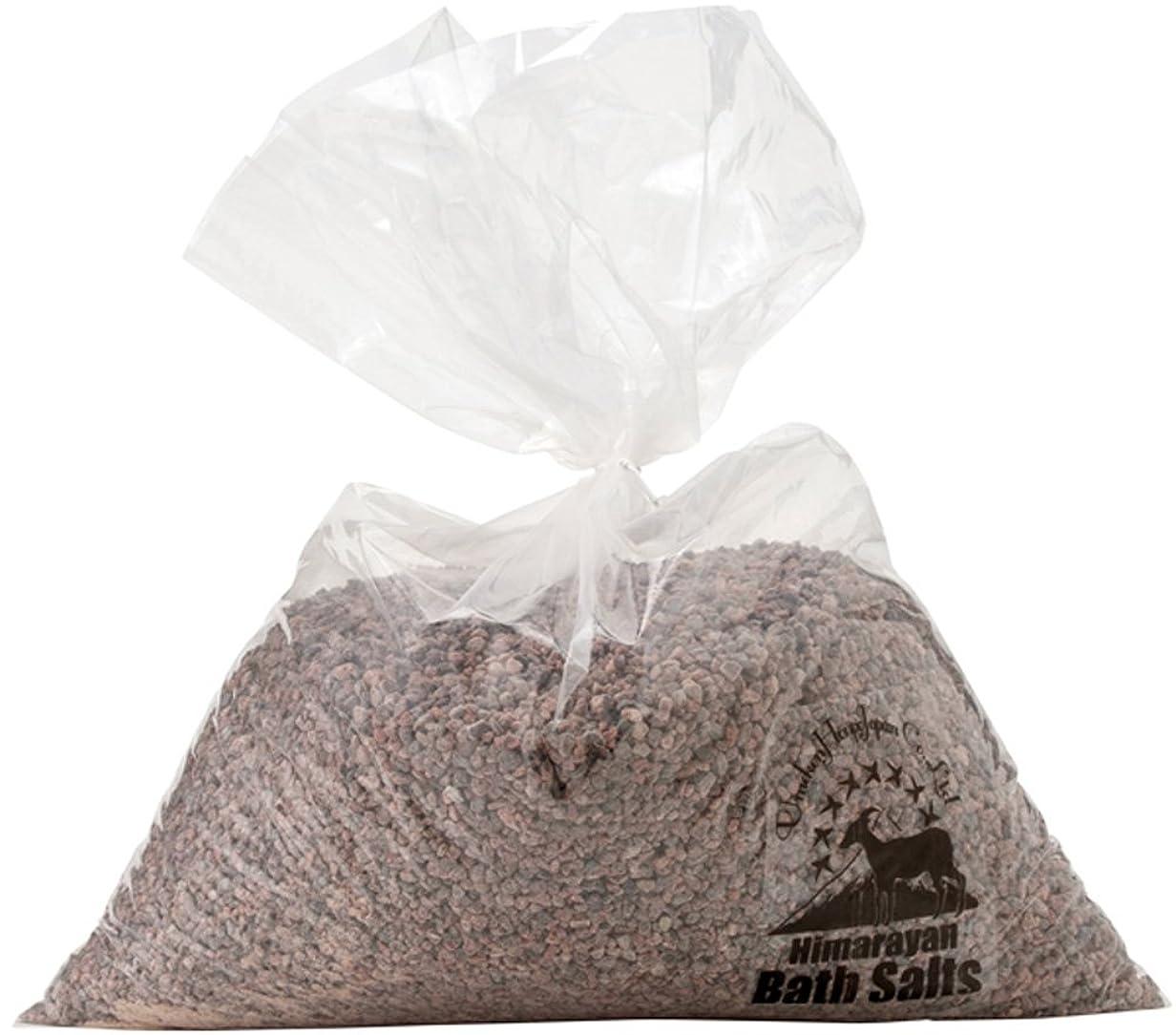 研究所ラジエーター海賊ヒマラヤ岩塩 バスソルト ブラック 小粒 5kg