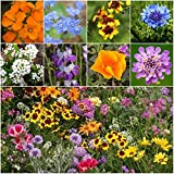 Seed Needs, Low Growing Wildflower Mixture (100% Pure Live Seed) 30,000 Seeds Open Pollinated