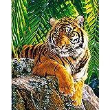 Soreatr Pintura 5D Diamante para Adultos y Niños Observación de tigre Taladro completo Bordado Redondo Kits de Punto de cruz Artesanía Decoración de Pared para el Hogar Gift-20X30CM