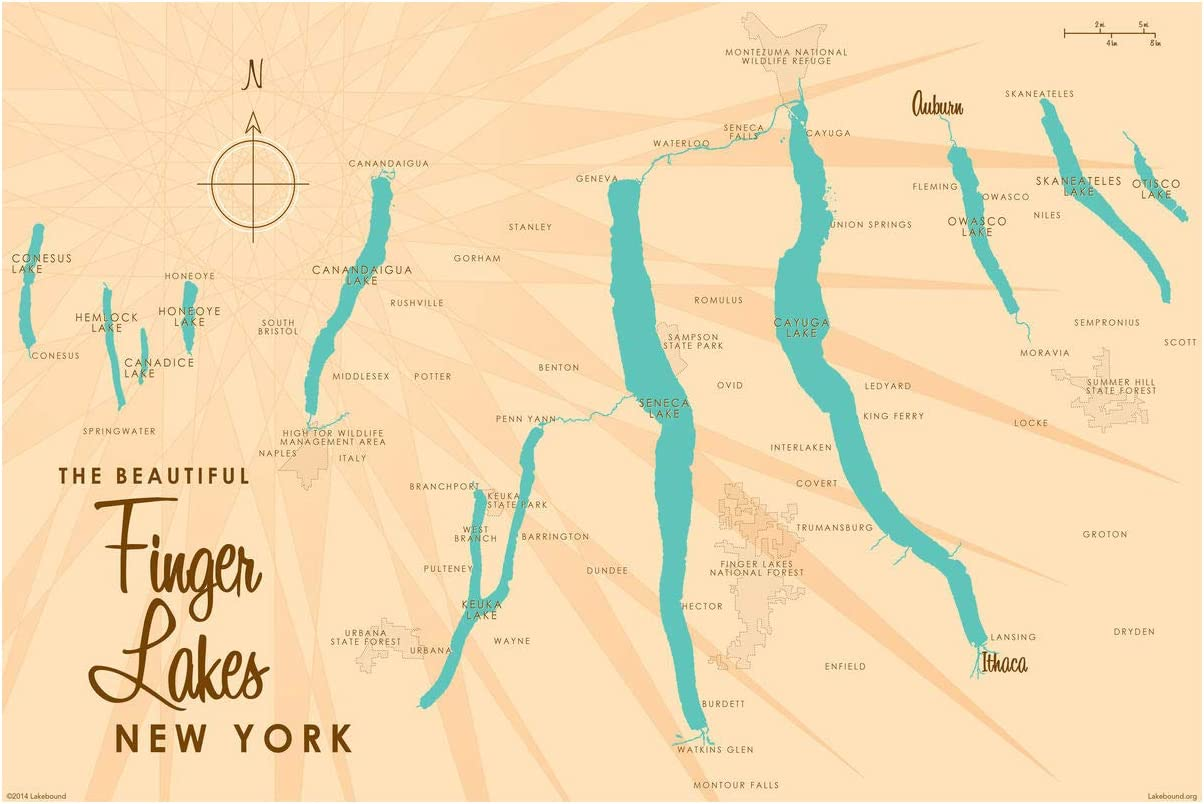 Finger Lakes New Outstanding York Map Giclee Lakebound Poster Art Award Print by 2