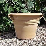Kreta - Vaso per piante in ceramica resistente al gelo, in vera terracotta | per piantare | fatto a mano | decorazione da giardino (sorbus 50 cm)