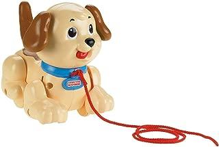 Amazon.es: perro peluche anda y ladra: Juguetes y juegos