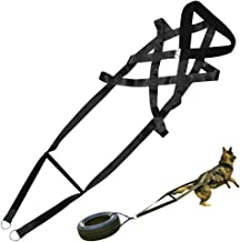 pitbull weight pulling harness and sled