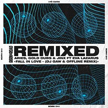 Fall In Love (DJ Gaw & Offline Remix)