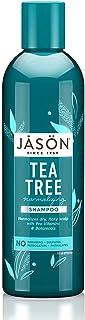 Jason Normalizing Treatment Shampoo, Tea Tree, 17.5 Oz