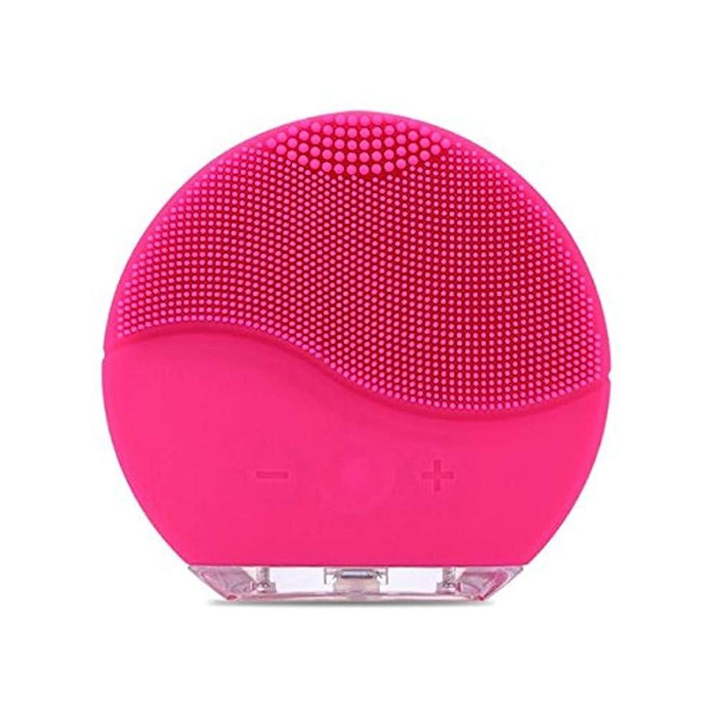 洋服桁株式会社Simg 電動 洗顔器 ブラシ 自動泡たて 音波洗顔 ボディブラシ 洗顔とマッサージ両立 無接点充電式毛穴ケア フェイスマッサージ洗顔器 IPX7防水 シリコン製 (ローズレッド)