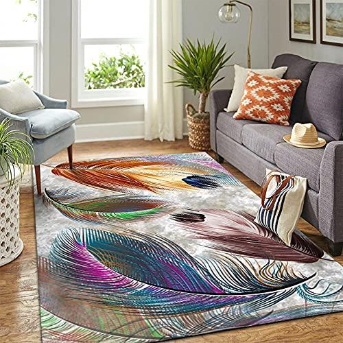 DRTWE Large Size Living Room Carpet 3D Colorful Feather Printed Soft Anti-Skid Velvet Bedside Area Rug Carpet Runner Kid'S Room Nursery Floor Pad Indoor Outdoor Play Mat,40 * 60Cm
