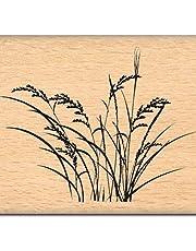 Florilèges Design Stamp fe112005Scrapbooking Herbs Beige 5x 7x 2.5cm