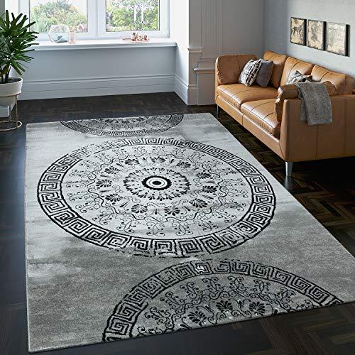 Paco Home Tapis Classique à Motifs Ornements Circulaires Chiné Moucheté Gris Liquidation, Dimension:120x170 cm