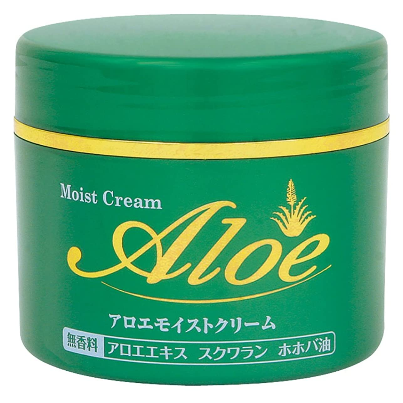アクセサリー熟すばかアロエモイストクリーム 160g