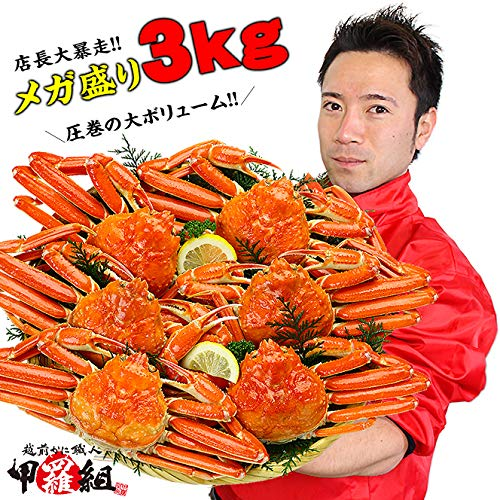 甲羅組 ズワイガニ カニ かに 蟹 ボイルずわいがに姿 3kg 6~7ハイ入 カナダ産