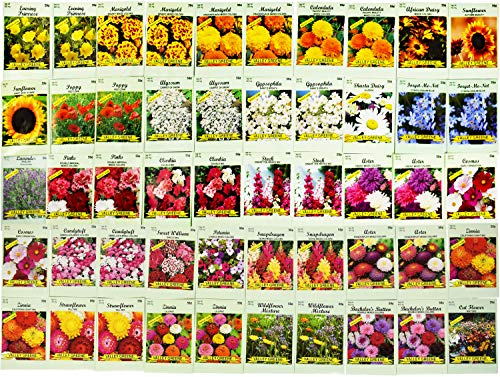 Set of 50 Assorted Flower Seed Packets! Flower Seeds in Bulk - 10+ Varieties Available!