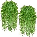 tellaLuna Plantas artificiales colgantes de plantas falsas viñas de imitación Boston helechos de plástico para colgar en el hogar, oficina, decoración (4 piezas)