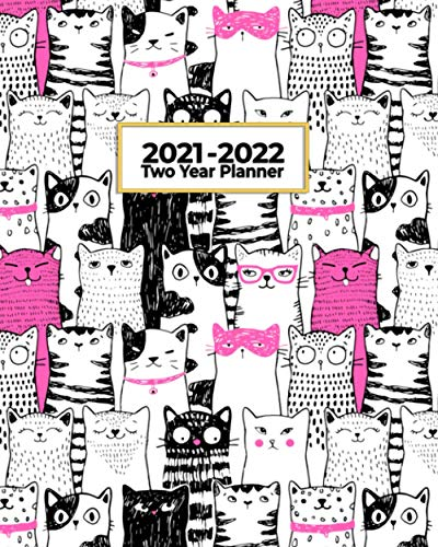 2021-2022 Two Year Planner: Crazy Pink Cat Lady | Perfect...