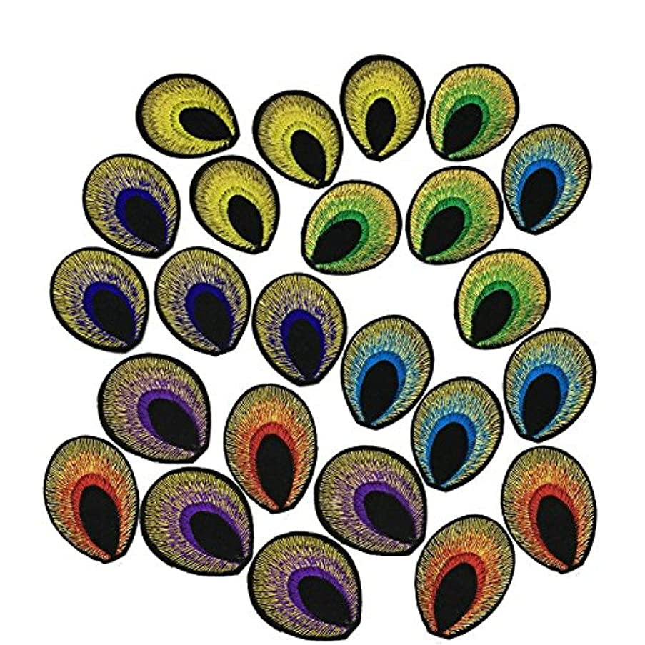 24pcs/set Colorful Little Fashion Clothes Sweater Embroidered Wings diy Big Peacock Tail Lace Fabric Patch Affixed Accessories (Need Sew on, No glue) (Little Feather)