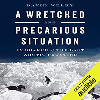A Wretched and Precarious Situation audiobook cover art