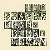 Dead & Born & Grown [Explicit]
