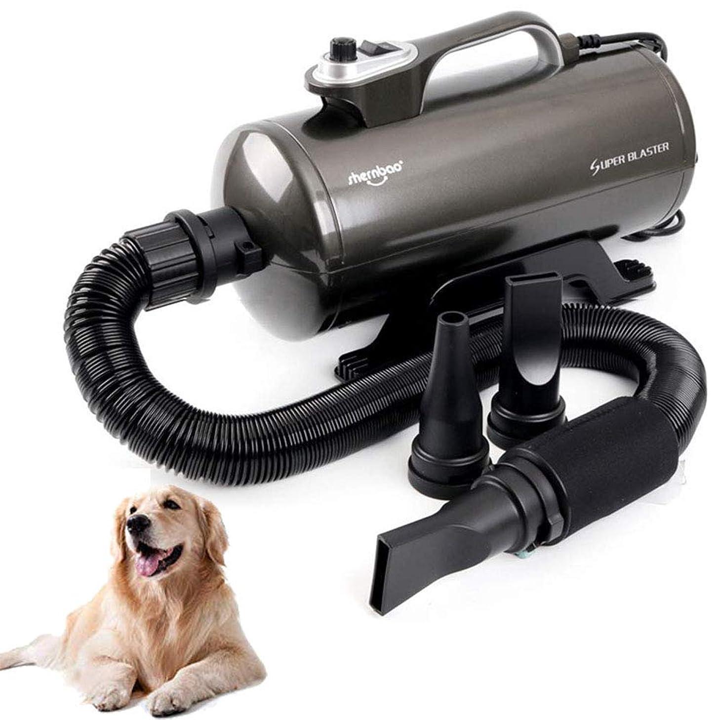 構造試み高潔な温度および3Mの適用範囲が広いホースが付いている犬の手入れをするヘアードライヤーのための2200Wブラスターのドライヤー