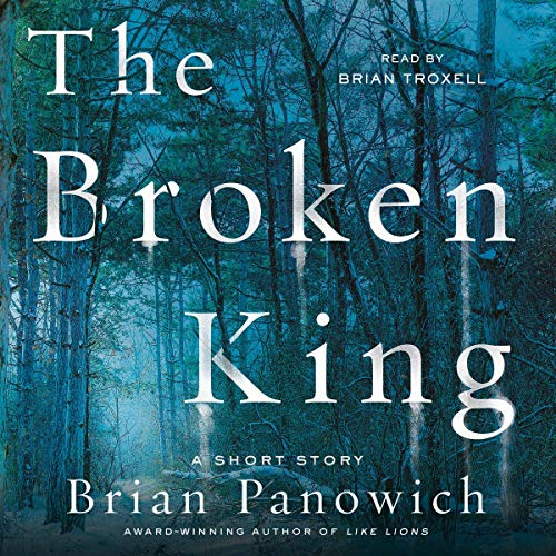 The Broken King audiobook cover art