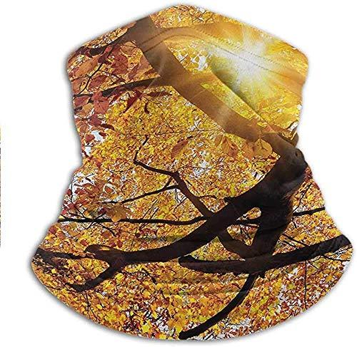 asdew987 Bufanda facial de sol a través de la hoja de oro amarillo vivo octubre follaje cosecha sereno paraíso foto arte cuello polaina bandanas para polvo a prueba de viento, anti-escupir 25 x 38 cm