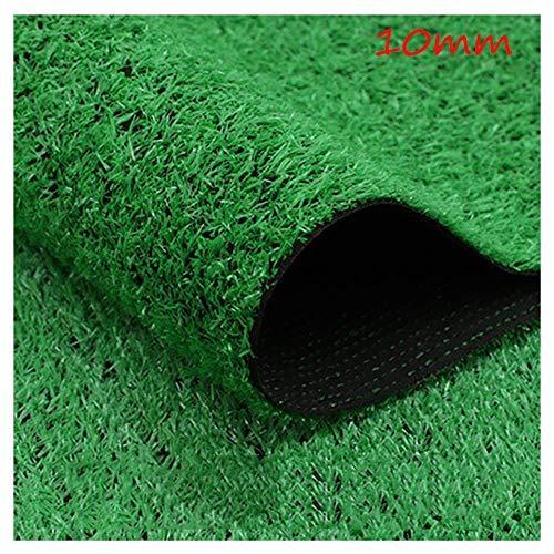 CWW Artificial Lawn Grashohe 10mm Kunstrasen Kunststoff Wanddekoration Einfache Reinigung Gras Dekoration Im Freien 2m Breite