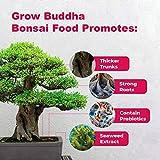 Zoom IMG-1 bonsai food fertilizzante per liquido