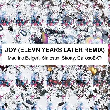 Joy (Elevn Years Later Remix)