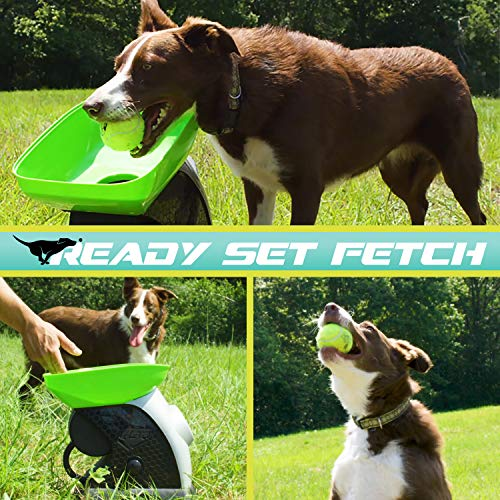 Franklin Pet Supply Ready Automatic Ball launcher