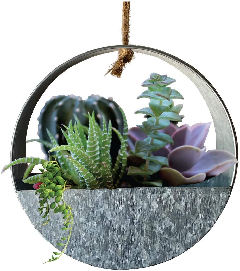 Lily's Home Indoor Wall Hanging Circular for Succul Low price Planter Gorgeous