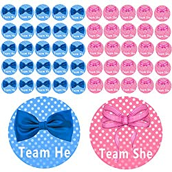 Baby Gender Reveal Party Ideas - The Frugal Girls 1263d3c56