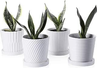 Best orchid pot white Reviews