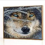 GJJHR DIY Pintura por Números Kits,Cabeza de Lobo de Nieve Pintada a Mano Pintura al óLeo Digital, DecoracióN del Hogar Regalo - 40x50cm(Sin Marco)