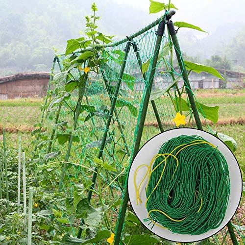 Garden Netting Nylon Trellis Net, Climbing Plant Pea & Bean Support Net, Anti Bird Net for Plants,Vegetable,Cucumber Trellis - 1.8 x 1.8 M