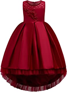 Girls Hi-Lo Lace Embroidery Pageant Wedding Flower Girl Ball Gowns FBA
