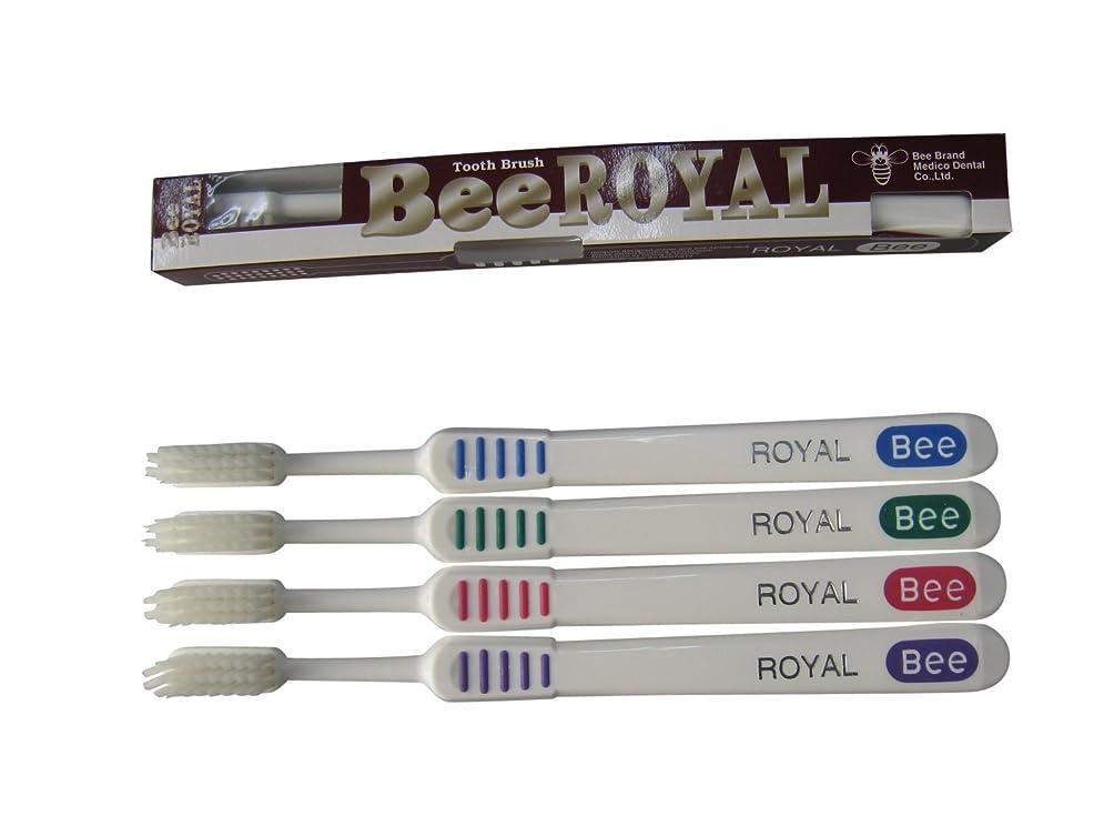 相対的ずるい著名なドクタービー 歯ブラシ ビーブランド ドクタービーロイヤル ふつう 4色アソート 20本入り