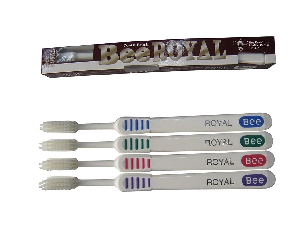 受粉するのヒープ寝室を掃除するドクタービー 歯ブラシ ビーブランド ドクタービーロイヤル ふつう 4色アソート 20本入り