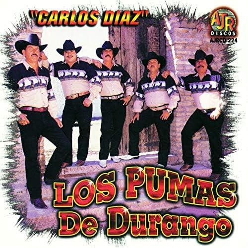 Los Pumas De Durango